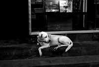 2010-07-25_in_Ubud 028-Edit